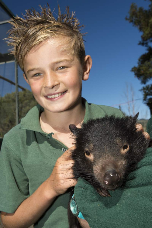 Wombat and Boy